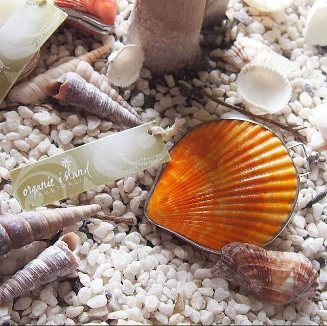 オーストラリアの貝殻がコンパクトに『シェルリップバーム』